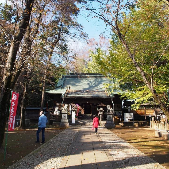 野木神社_a0268412_22442328.jpg