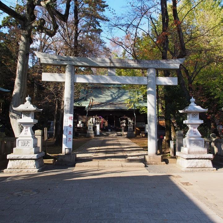 野木神社_a0268412_22442332.jpg