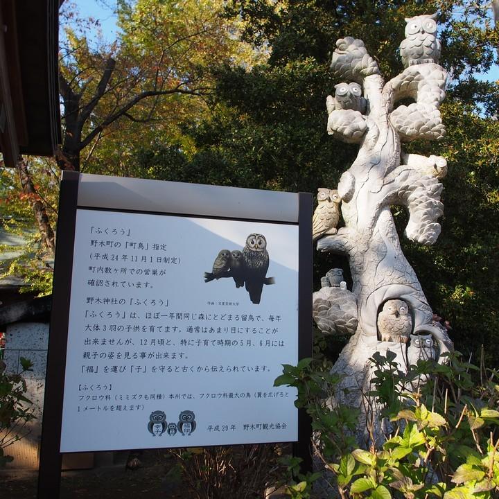 野木神社_a0268412_22442338.jpg