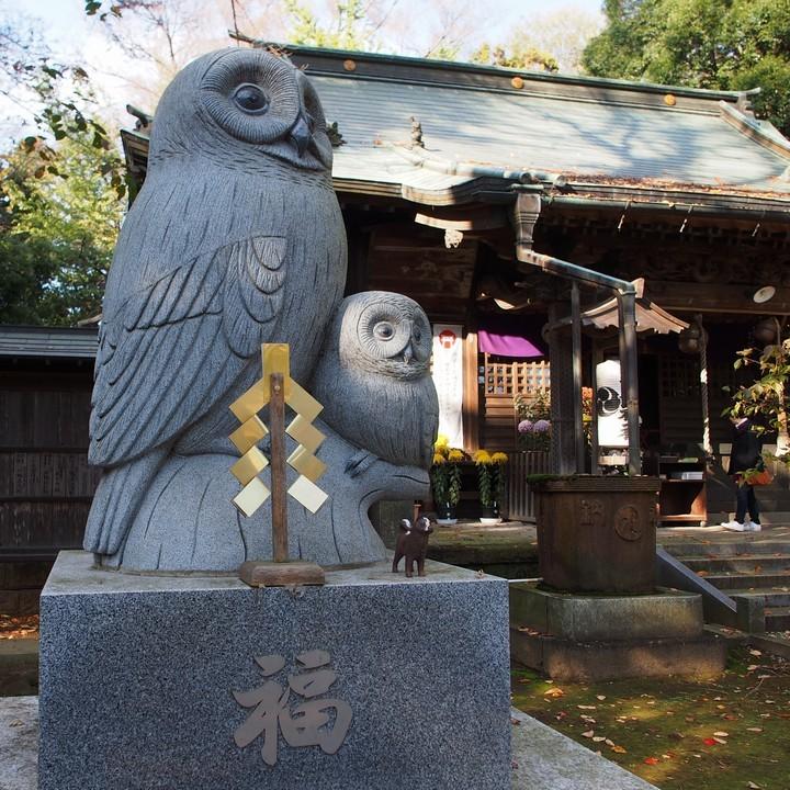 野木神社_a0268412_22443374.jpg