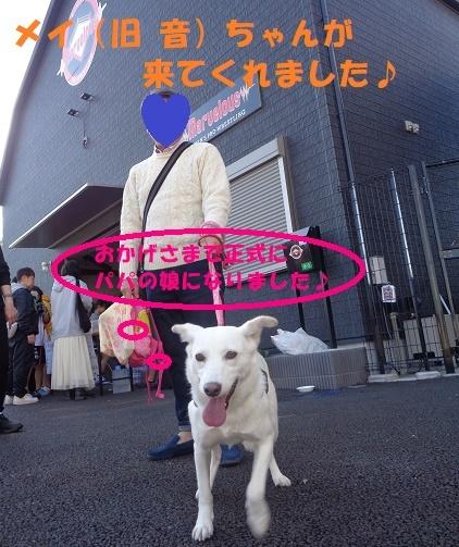 f0121712_10253659.jpg