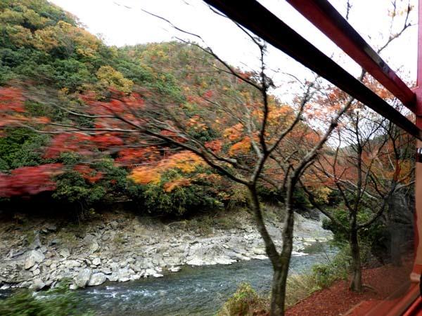 トロッコ列車で紅葉を楽しんだ_e0048413_23004850.jpg