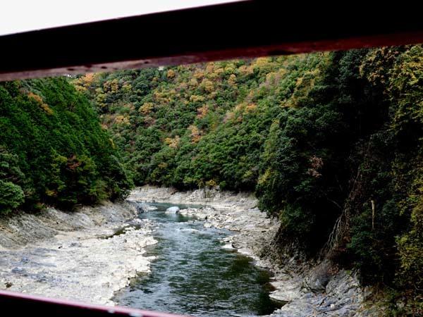 トロッコ列車で紅葉を楽しんだ_e0048413_23005310.jpg
