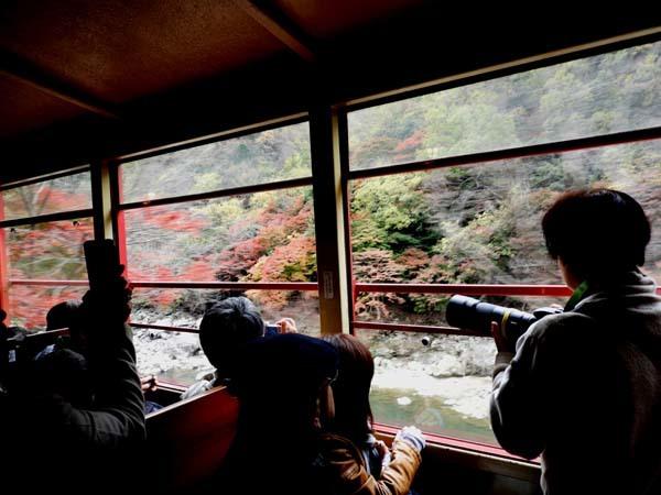トロッコ列車で紅葉を楽しんだ_e0048413_23005662.jpg