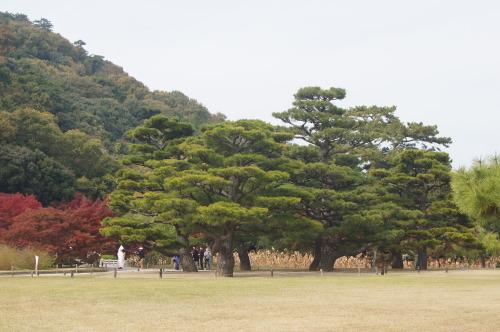 栗林公園 1_e0181373_20215602.jpg