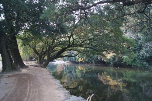栗林公園 1_e0181373_20222935.jpg