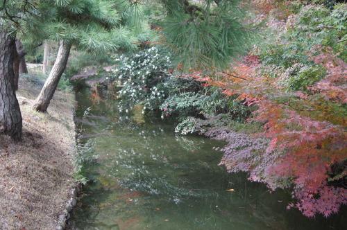 栗林公園 1_e0181373_20223651.jpg