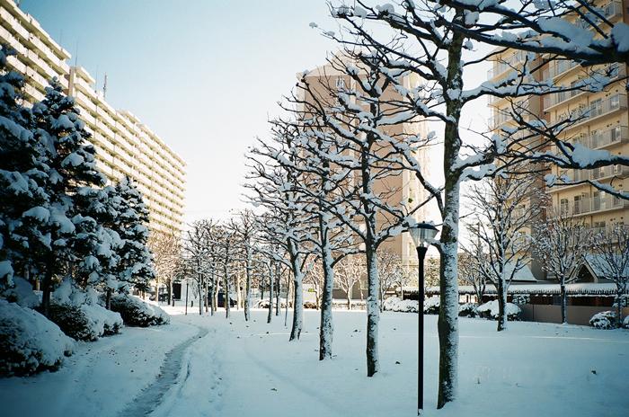 融けてしまったマンションの初雪_c0182775_17432985.jpg