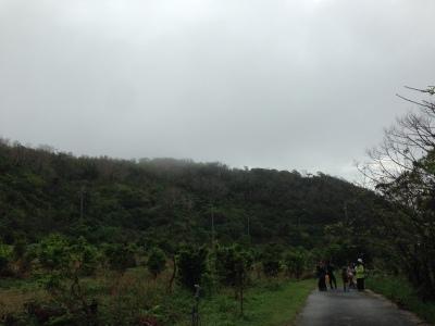 八重岳の自然観察会 2018 秋 無事終了しました。_a0247891_11122572.jpg