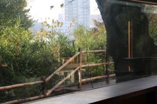 明治150年記念・日本を変えた「千の技術博」見学後の昼食は、韻松亭(上野公園内)で_c0075701_20424573.jpg