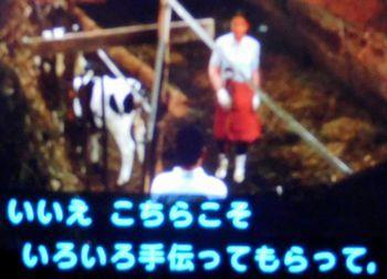 遙かなる山の呼び声(映画)_b0044404_20122510.jpg
