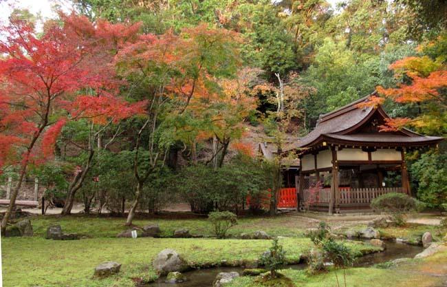 上賀茂神社 紅葉の盛り_e0048413_20443562.jpg