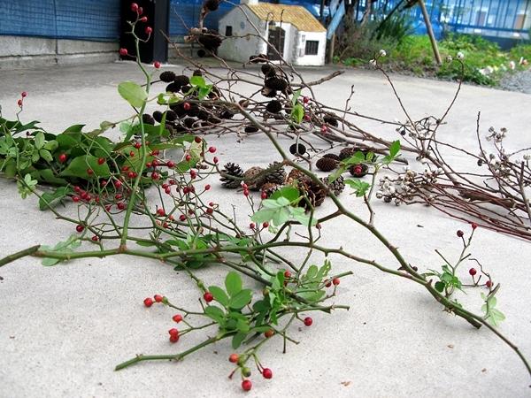 秋の実 収穫_f0129726_22293933.jpg