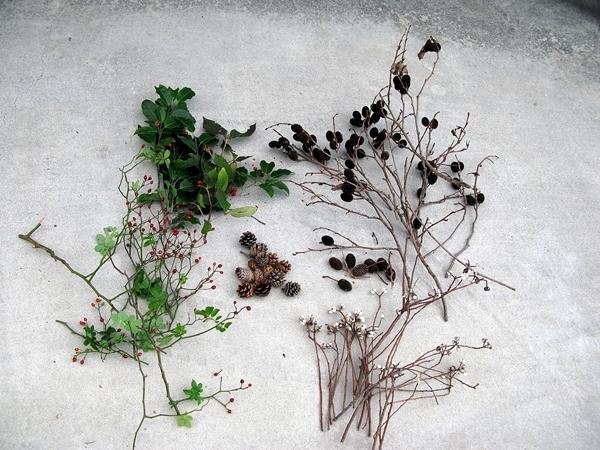 秋の実 収穫_f0129726_22301438.jpg