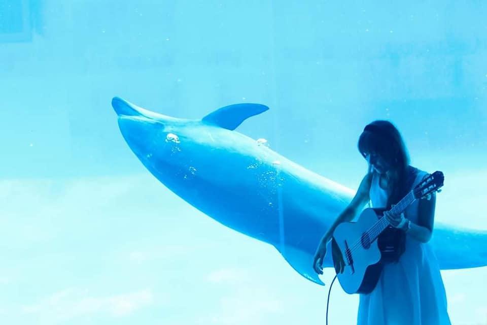 名古屋港水族館さんにて演奏させて頂きます!_f0373339_12311053.jpg