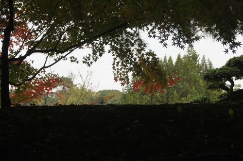 栗林公園 2_e0181373_19474430.jpg
