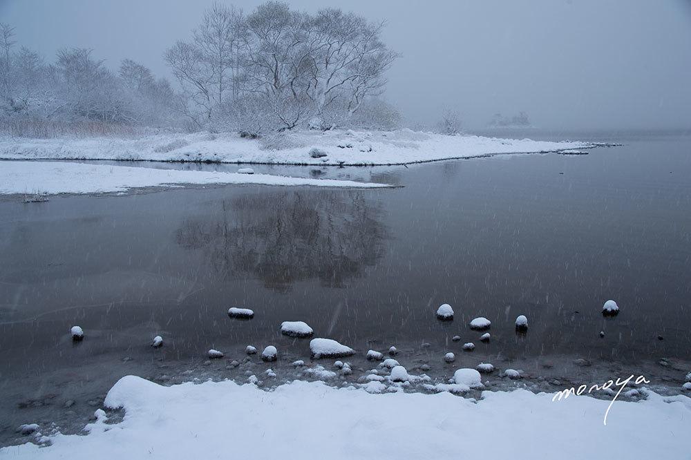 今年初めての雪_c0085877_06012891.jpg
