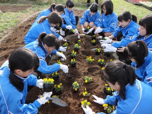 城西中学校の皆さんが参加され市民活動体験会が行われました_d0257693_10380052.jpg