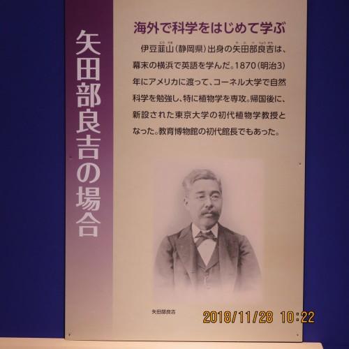 日本を変えた千の技術博 を見学 ・ 2_c0075701_21231796.jpg
