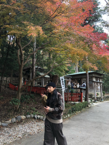 2018.秋 京都_c0330308_10453270.jpg