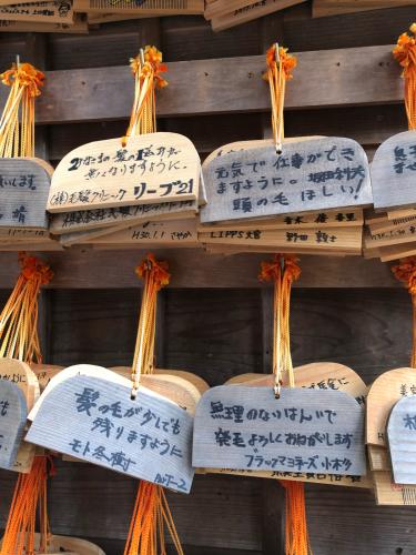 2018.秋 京都_c0330308_10471054.jpg