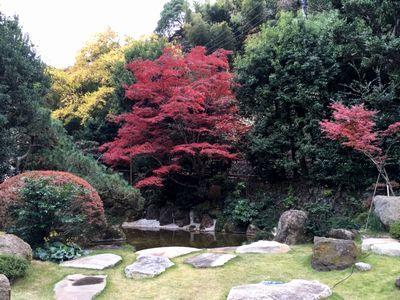 紅葉を見ながらコーヒータイム_e0234016_16260123.jpg