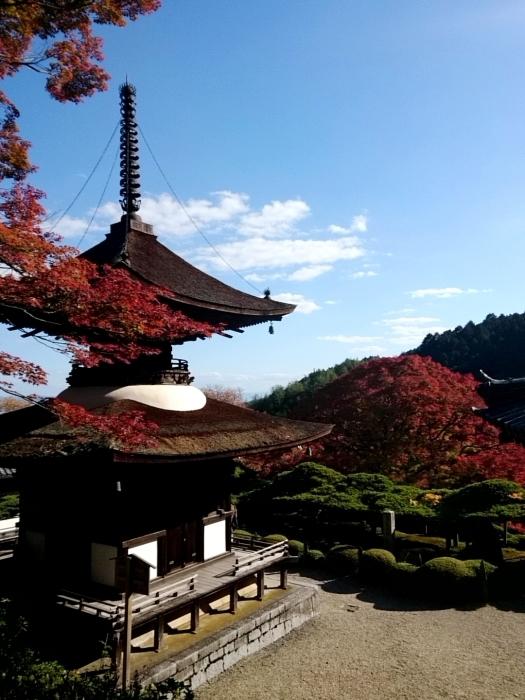 幸せ京都旅 「善峯寺」 山寺を彩る美しき紅葉_c0362623_15242497.jpg