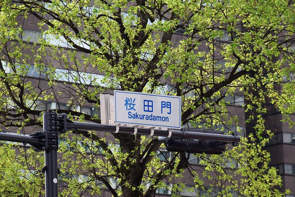 江戸城を歩く。 その3 「桜田門」_e0158128_17052592.jpg