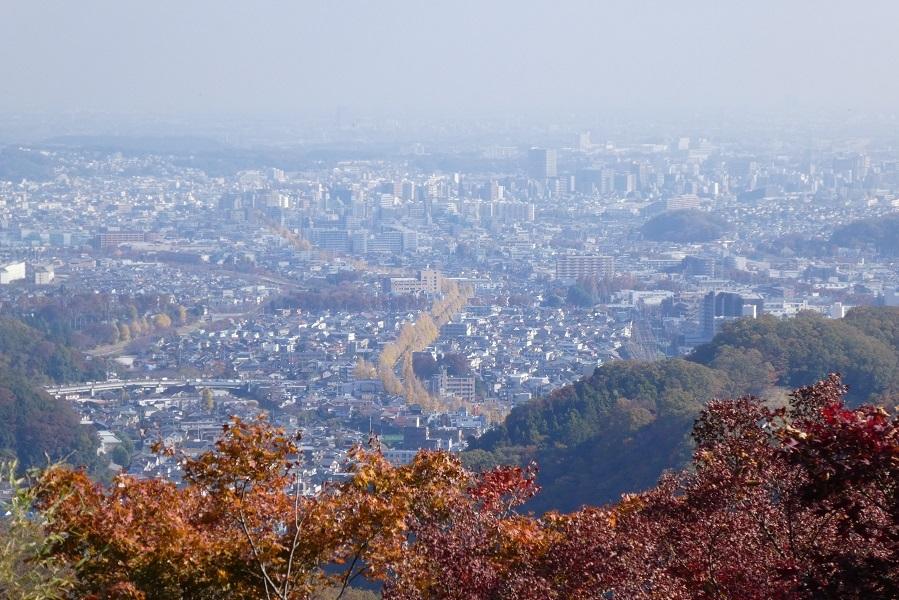 11/27 高尾山紅葉_d0288144_21321965.jpg