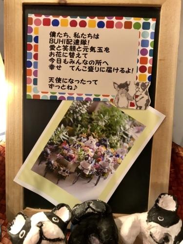 横浜赤レンガ倉庫で愛おしいBUHIグッズをいっぱい準備して空と皆さまをお待ちしております♪_b0307951_23241087.jpg