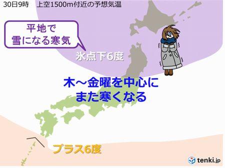 さすが亜熱帯(p-д-;q)♪_c0139375_12493675.jpg