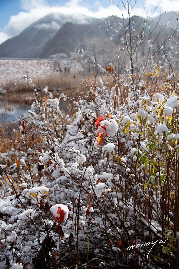雪の秋元湖_c0085877_03330228.jpg