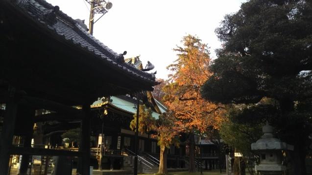 妙法寺の黄葉_e0232277_17551660.jpg