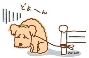 11月30日(金)☆TOMMYアウトレット☆あゆブログ(*´﹃`*) ウィッシュT様納車♪_b0127002_17294452.jpg