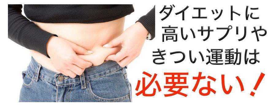 ダイエットに高いサプリやきつい運動は必要ない!_a0119931_22495342.jpg