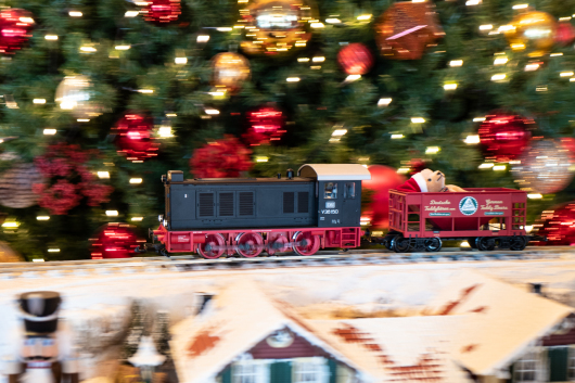Christmas Train   ・・・えびす・・・_f0333031_08040439.jpg