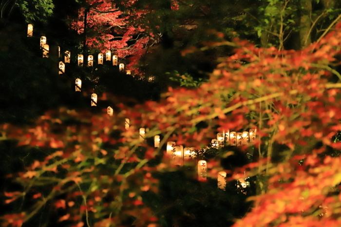 【石山寺】紅葉関西帰省 - 7 -_f0348831_22571765.jpg