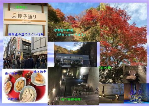 b0043355_1635951.jpg
