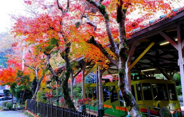 高尾山口駅ケーブルカー清滝駅周辺_a0150260_11533098.jpg