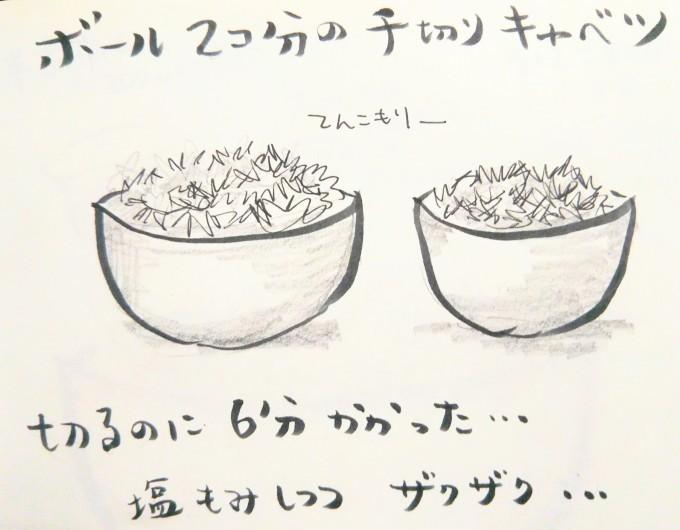 酢キャベツを食べる日々_b0210688_21433019.jpg
