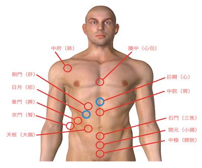内臓疲労調整って、具体的にはどうするの? 〜ある日の施術より〜_e0073240_05384933.jpg
