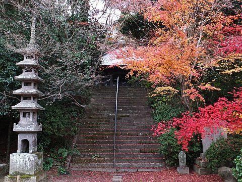 鷲峰寺(しゅうぶじ)_e0146484_17480995.jpg