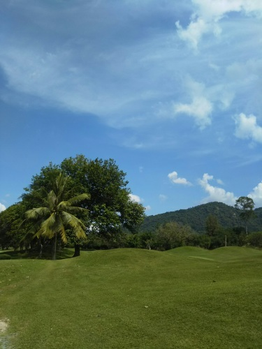 No.4101 12月1日(土):ゴルフを楽しんでまいりました_b0113993_17232191.jpg