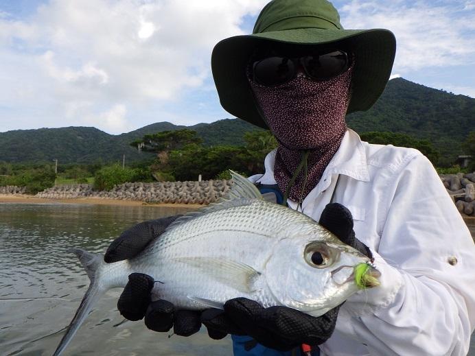 石垣島の中毒患者_f0097924_16491846.jpg