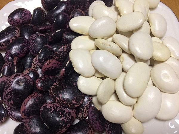 るべしべ白花豆くらぶの講習会_f0101174_09204728.jpg