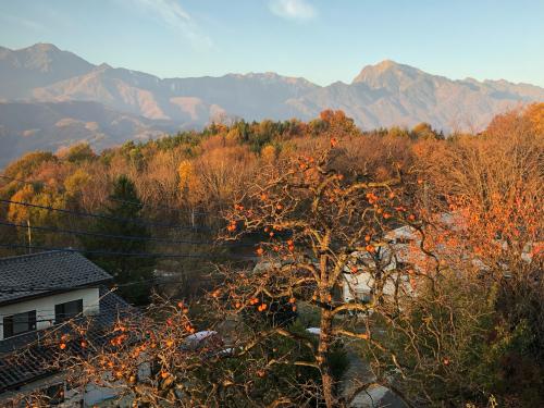 秋も終わり、雪化粧が待たれる、甲斐駒ケ岳。今、。_d0338282_09025633.jpg