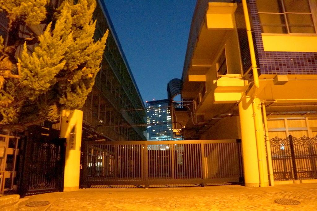 飯田橋の「島」から靖国神社を抜けて 11/1_c0180686_19241624.jpg