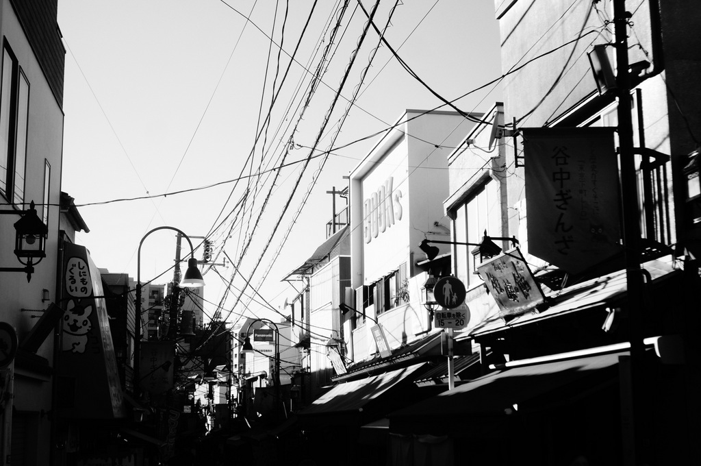 昼は谷根千、夜は有楽町から飯田橋etc. 11/1_c0180686_19324683.jpg