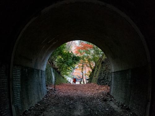 武庫川ナイト_a0279012_15310297.jpeg