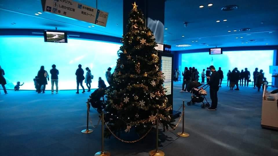 名古屋港水族館へいってきました!_f0373339_1250964.jpg